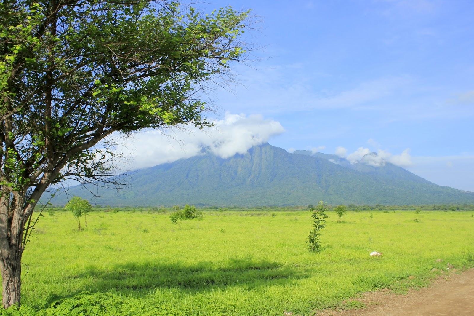 Referensi dan Rekomendasi Tempat Wisata di Indonesia: Taman Nasional Baluran