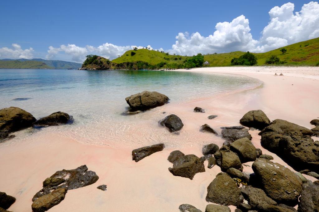 Referensi Tempat Wisata di Indonesia | Pink Beach di Pulau Komodo