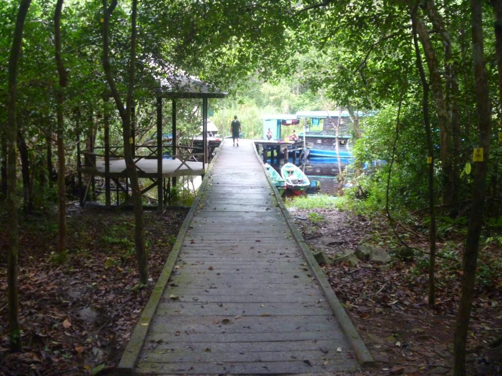 Referensi Tempat Wisata di Indonesia | Pondok Ambung Taman Nasional Tanjung Putin