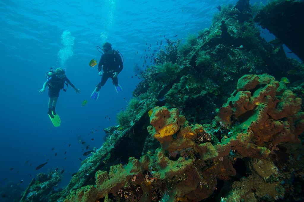 Referensi Tempat Wisata di Indonesia | Tempat Snorkeling di Pantai Tulamben Bali