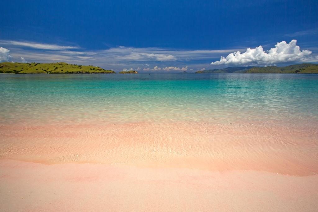 Referensi Tempat Wisata di Indonesia | Tempat Wisata di Flores: Pantai Pink Pulau Komodo