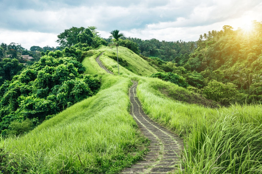 New Tourist Attractions In Ubud Bali 2019 Hits And
